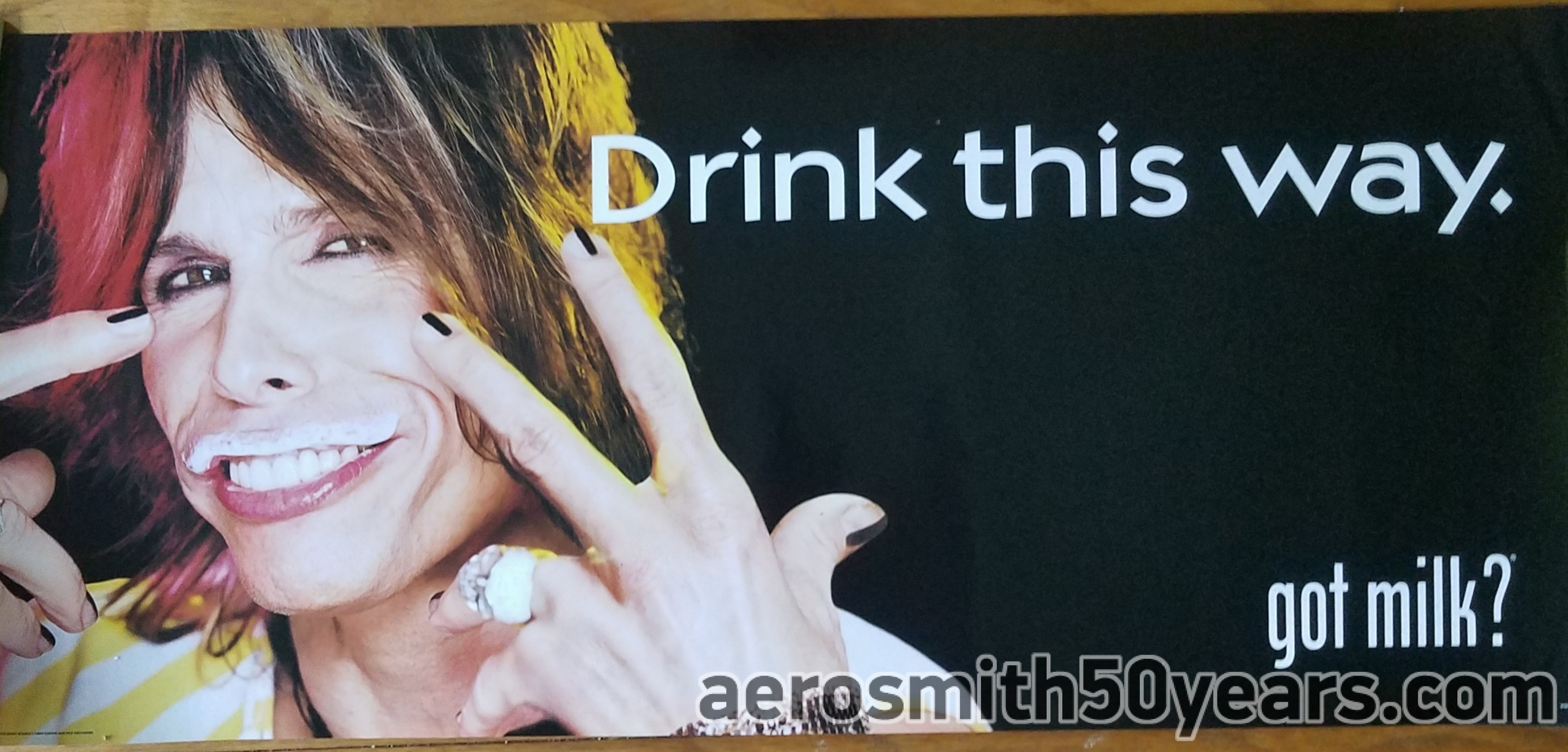"""Steven Tyler 2002 AD- Drink This Way """"Got Milk ?"""" Promotional Posters"""